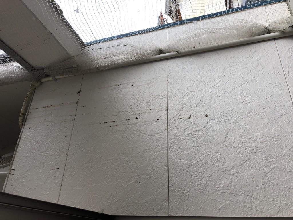 【豊後大野市】ベランダのハウスクリーニング☆ハトの糞も綺麗に掃除しお喜びいただけました!